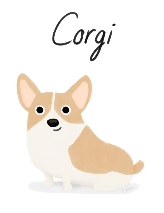 Corgi - Cute Dog Series Canvas Print