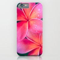 Aloha Hawaii Kalama O Ne… iPhone 6 Slim Case