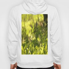 In The Summer Forest  Hoody