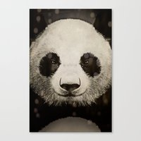 panda eyes Canvas Print