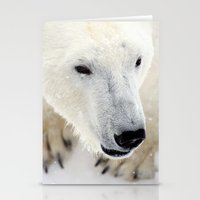 polar bear Stationery Cards featuring Polar Bear by MVision Photography