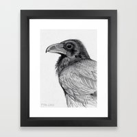 Sketchy Raven Study Framed Art Print