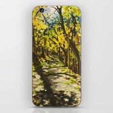 C&O Canal Towpath, November iPhone & iPod Skin