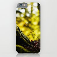 iPhone & iPod Case featuring The Colors of Autumn by Rainer Steinke