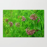Canvas Print featuring Garden Flowers by Ornithology