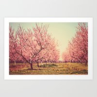 Springtime Dream Art Print