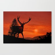 Deer On A Hill Canvas Print