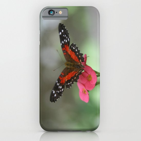 Butterfly House 2 iPhone & iPod Case