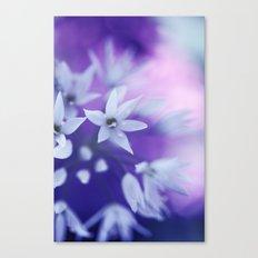 Dusky Violet Canvas Print