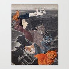Ol' Cat Canyon Canvas Print
