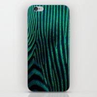 Zebra Path iPhone & iPod Skin