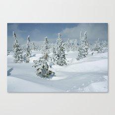 Winter Day 24 Canvas Print