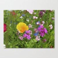 wildflowers meadow II Canvas Print