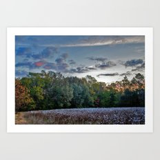 Early Morning in the Cotton Field 2 Art Print