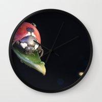 Ladybug Journey Wall Clock