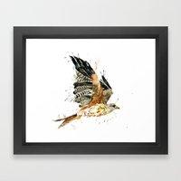 Red Kite Framed Art Print