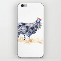 Guineafowl iPhone & iPod Skin