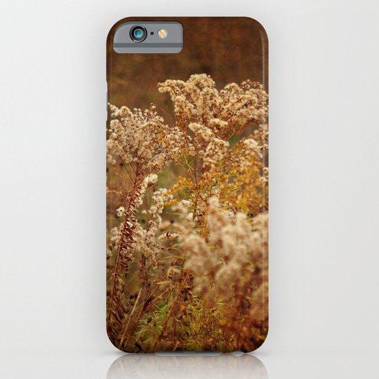 Dried Arrangement iPhone & iPod Case