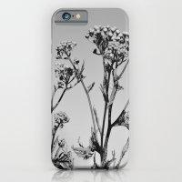 Weeds iPhone 6 Slim Case