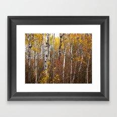 Autumn in Cheboygan, MI Framed Art Print