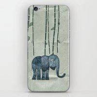 Edgerton iPhone & iPod Skin