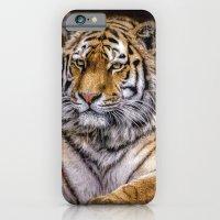 Majestic Tiger iPhone 6 Slim Case