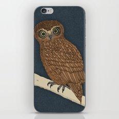 Boobook Owl iPhone & iPod Skin