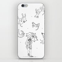 Its Raining Cats And Dog… iPhone & iPod Skin