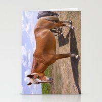 New Forest Ponies Stationery Cards