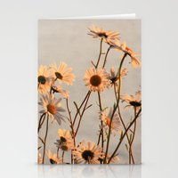 Daisies Of The River Ban… Stationery Cards