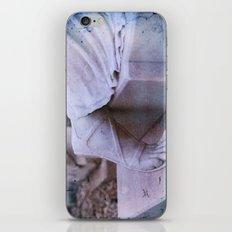 StoneFoot iPhone & iPod Skin