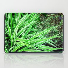 LongLeaves iPad Case