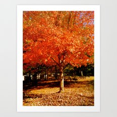colors of fall Art Print