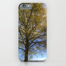 English Summer Farm iPhone 6s Slim Case