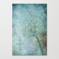 Delicate And Blue  Canvas Print