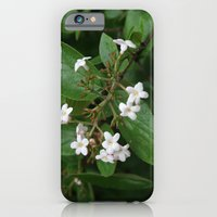 iPhone & iPod Case featuring Good Morning! by halfwaytohear