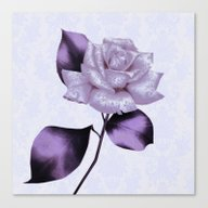 Purple Satiny Rose On So… Canvas Print