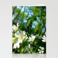 Bugs Eye View Stationery Cards