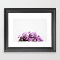 Phlox {pink} Framed Art Print