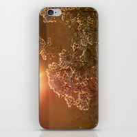 flowers at sunset iPhone & iPod Skin