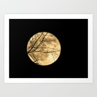 Shadows On The Moon Art Print