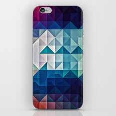cool palette iPhone & iPod Skin