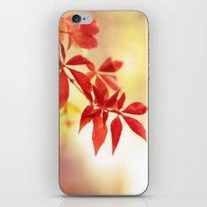 Fiery Creeper iPhone & iPod Skin