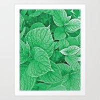 Orquidea Art Print