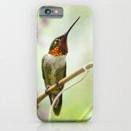 Hummingbird Passion iPhone 6 Slim Case
