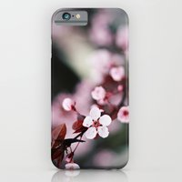 iPhone & iPod Case featuring Pink Cherry Blossoms by castle on a cloud