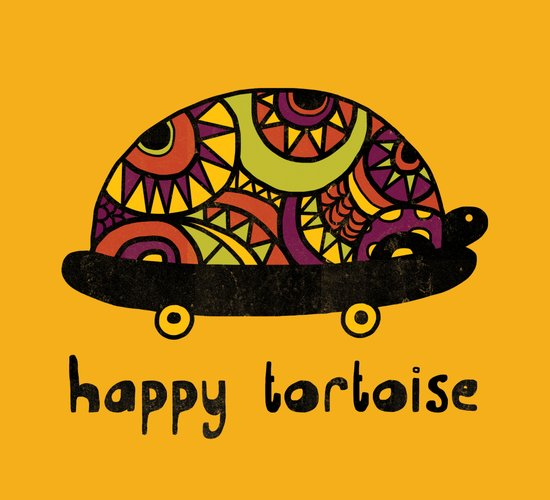 Happy Tortoise Canvas Print
