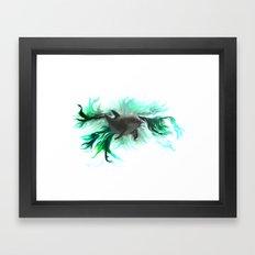 Dolphin Baby Framed Art Print