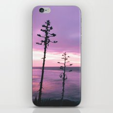 Winter Skies iPhone & iPod Skin