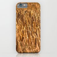 iPhone & iPod Case featuring Early Summer by SC Photography